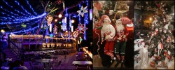 Things to do in Austin this Christmas 2014